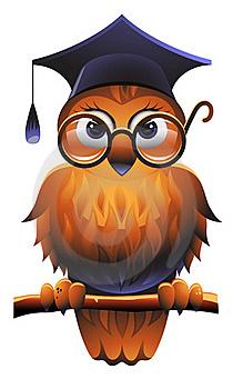 игры мудрой совы